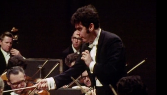 Barenboim on Beethoven 13: The Fifth Symphony