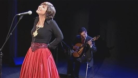 Katia Guerreiro, Between the hands of Fado