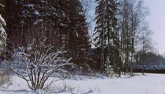 Jean Sibelius, 1865-1957, par Christopher Nupen (I)
